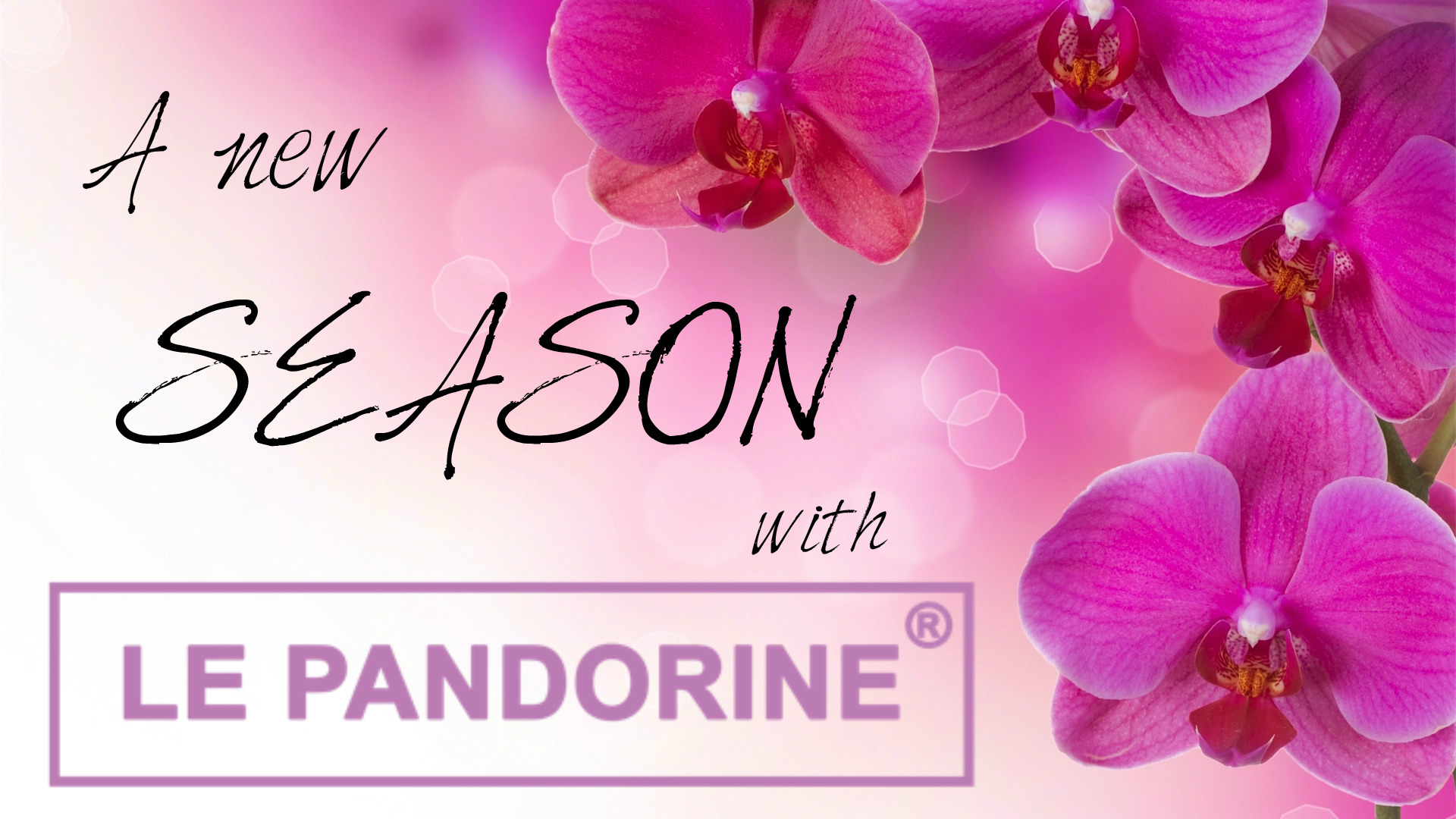 Spring & Summer 2015 Collection by Le Pandorine – Micol Uberti